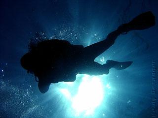 Scuba diving in Rio - Arraial do Cabo