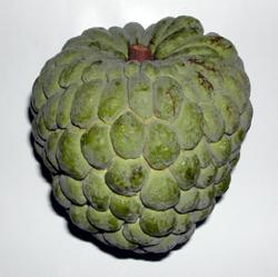 Rio Fruits - Fruta de Conde