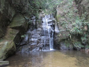 waterfall tijuca forest
