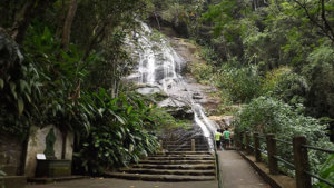 taunay waterfall tijuca forest