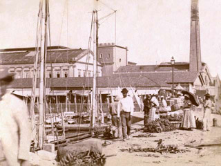 Neighbourhoods in Rio - Docks in Centro