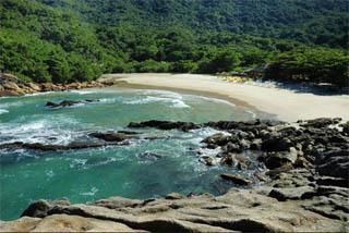 Trindade - Praia do Meio