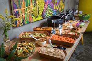 gaia art & cafe vegan food in rio