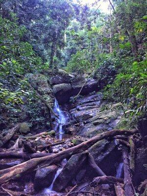 waterfall in Rio de Janeiro